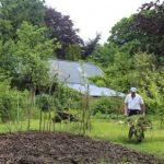 Annagh Social Farm