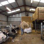 Bradkeel Social Farm