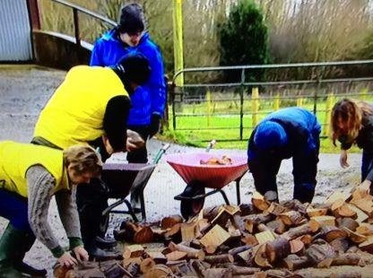 Social Farming on the BBC